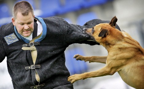 Dog owners face written and practical tests