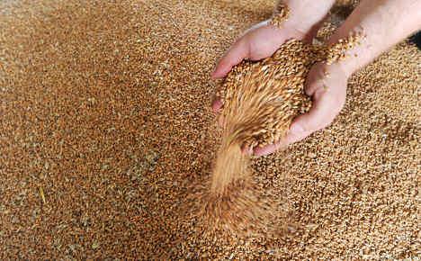 Deutsche Bank reduces 'hunger trade'
