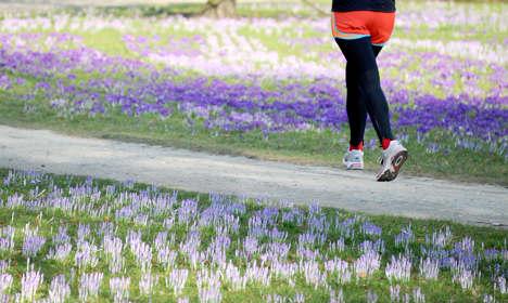 Spring turns more friendly towards weekend