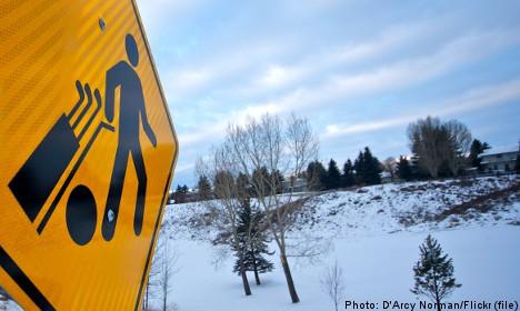 Swedish snow golfing champs 'hit the whites'