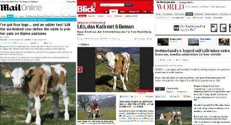 Switzerland's six-legged calf goes global