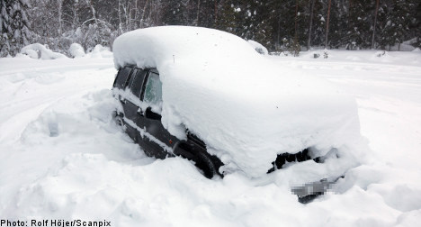 Secret diary reveals Swedish 'snow man' pain