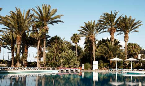 Windy palm tree peril kills holidaymaker