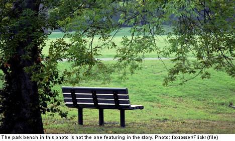 Sleeping tourist raped on Stockholm park bench
