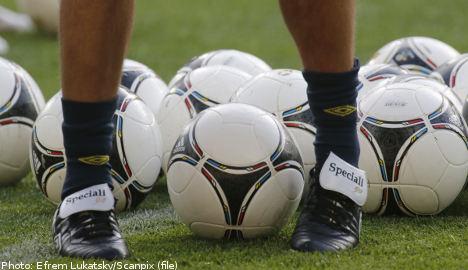 Sweden 'serious' about Ukraine game: Hamrén