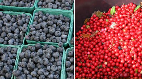 New 'blingon' berry found in Sweden