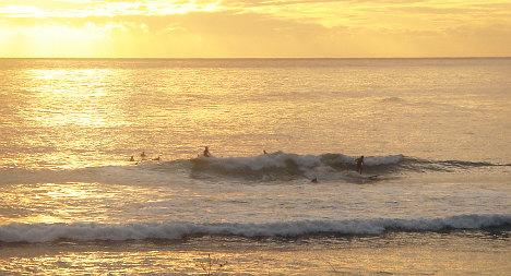 Shark kills surfer on Indian Ocean island