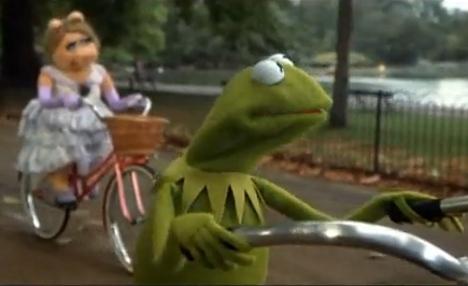 Police hunt 'Kermit the con-artist'