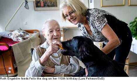 Oldest living Swede celebrates 110 years