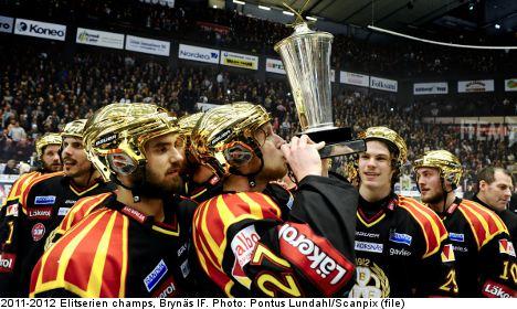 Swedish ice hockey: five fun Elitserien facts