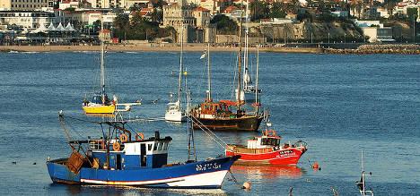 French launch stones at British fisherman