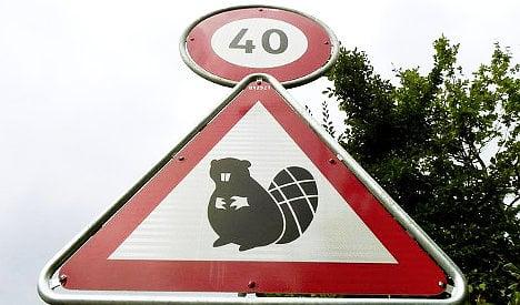 Bern slaps down Geneva beaver road signs
