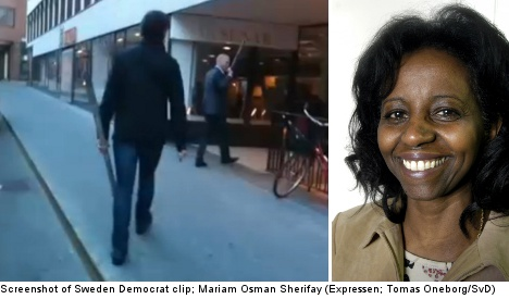 'Sweden Democrat thugs only voice what many Swedes think'
