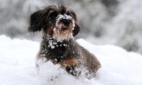 Wind, cold, snow herald start of winter