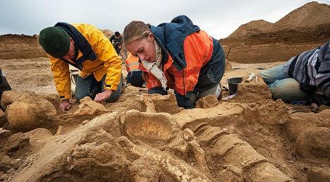 Woolly mammoth 'Helmut' found near Paris