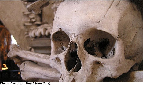 Sweden looks to send skulls back to Polynesia