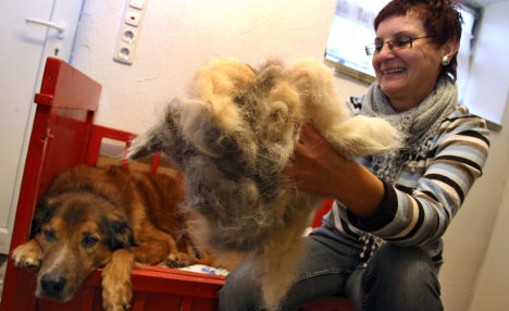 Bavarians clamour for canine wool