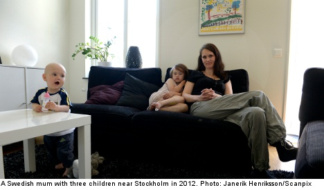 Swedes set for slew of new laws in 2013
