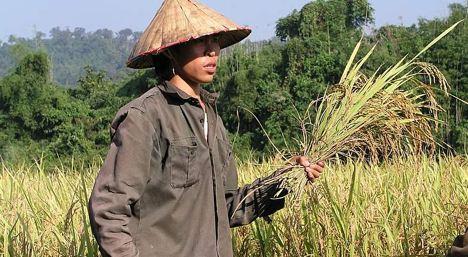Laos expels Swiss charity director