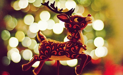Why Rudolph's nose is so bright: Norway study