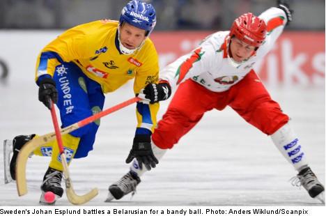 Sweden spanks Belarus with record 28 goals