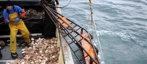 Scallop wars: France fines British captain