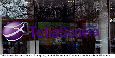 TeliaSonera rebuffs minister's 'time-out' call