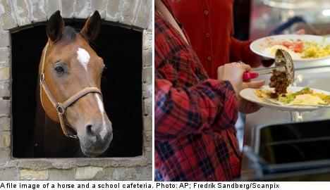 Swedish shops to churn horsemeat into biogas