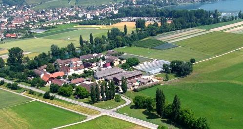 Prison inmate escapes in centre of Bern