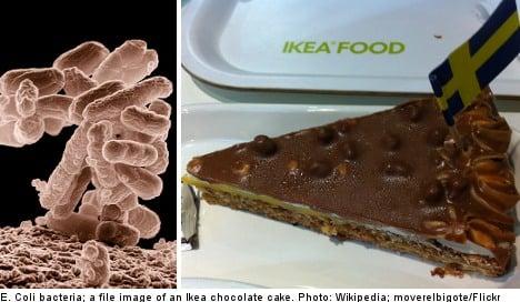 Faecal bacteria found in Ikea chocolate cakes