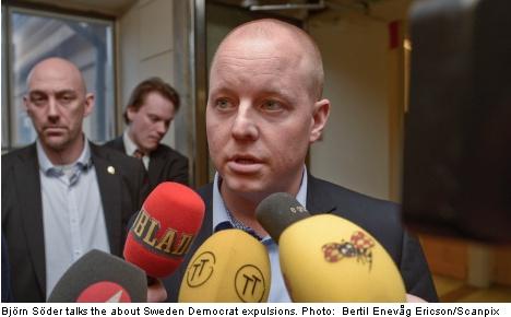Twelve heads roll in Sweden Democrat purge