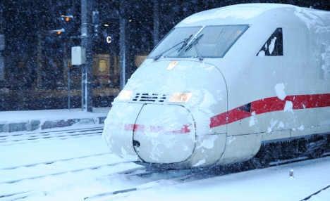 Bird traps hundreds in Cologne train overnight