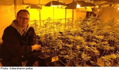 Swedish police smoke out major marijuana find