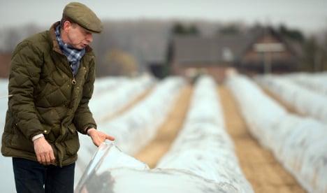 Bad weather behind asparagus price hike