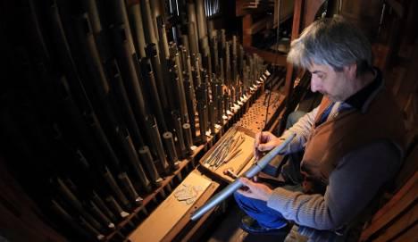 Mould 'haemorrhoids' threaten church organs