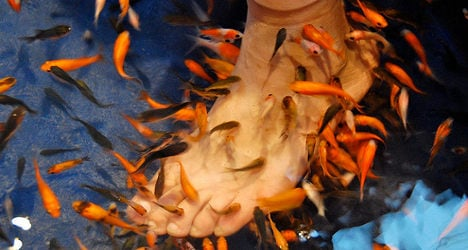 Pedicures a bit fishy says French health agency
