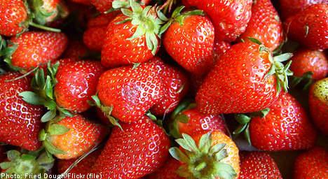 Swedish strawberry bliss to sweeten Midsummer