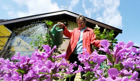 Single women 'too much trouble' for allotments