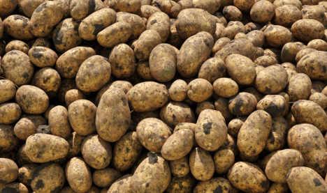 Potato price-fixing costs consumers millions