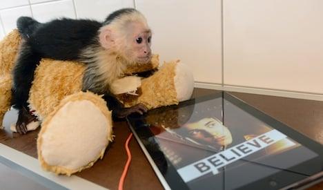 Justin Bieber's monkey becomes 'German'