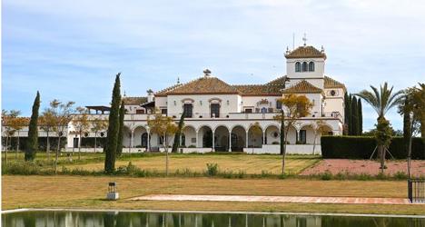 Estate sale ends 'Citizen Kane' Spanish legacy
