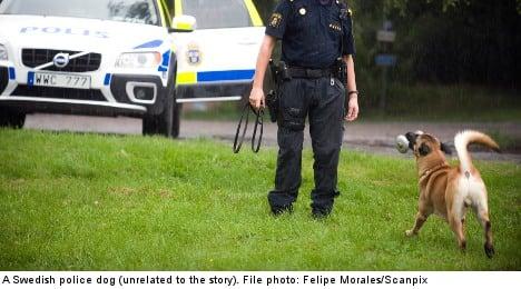 Shock as policewoman beats Swedish drunk