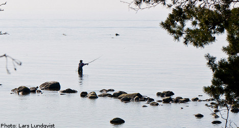 Sweden lags in Baltic Sea protection efforts