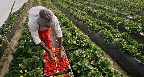 Spain tops non-European Union worker rankings