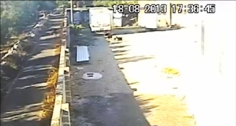 Puppy-flinging jogger sparks outrage in Italy