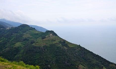 Ligurian vineyards under threat