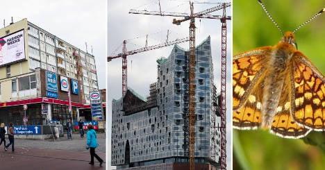 Germany wastes billions on bizarre projects