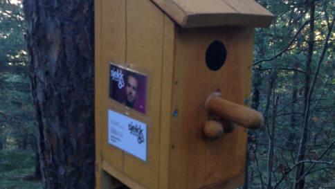 Unusual bird box in Oslo's Ekeberg Forest
