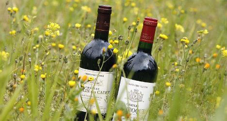 French drinkers develop taste for greener wine