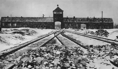 Eyewitness Auschwitz testimony goes online